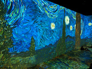 30th Sep 2021 - the starry night