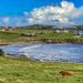 Hoswick Bay
