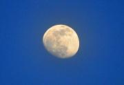 17th Jan 2011 - Waxing Moon
