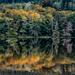 Crocker Lake, early Autumn by theredcamera