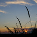 Sunset on the Prairie...