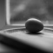 Egg by the window (J.Sudek inspired)