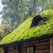 An old hut  by haskar