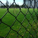 Opening #5: Through a Fence