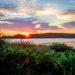 Sunrise at Cape Porpoise