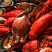 fruits de mer - crustaceans
