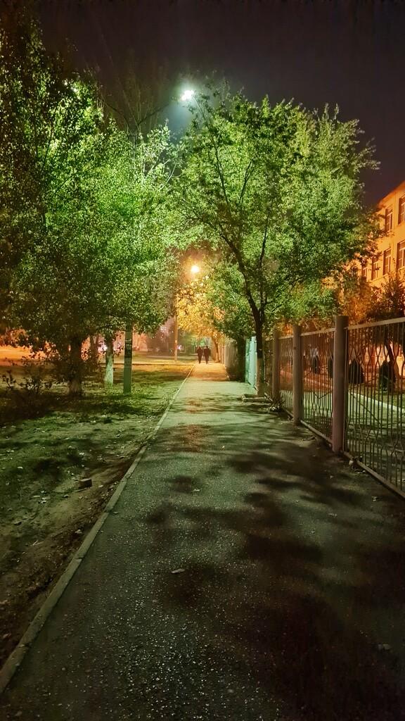 It's already dark in the evening by evgeniamsk