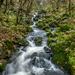 Flowing by helstor365