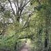 Afternoon Walk Around The Reservoir