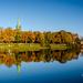Autumn along the Nidelva
