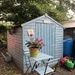 Pretty shed at the allotments