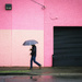 Walking in the Rain 2