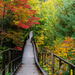 Boardwalk to the Falls