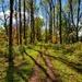 Waterford Heritage Trail