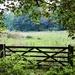 Gateway…. by carole_sandford