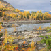 The Columbia River in Fall