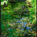Reflections; Still Mostly Green