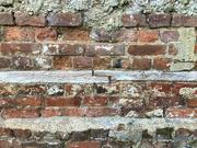 21st Oct 2021 - Hitting a brick wall