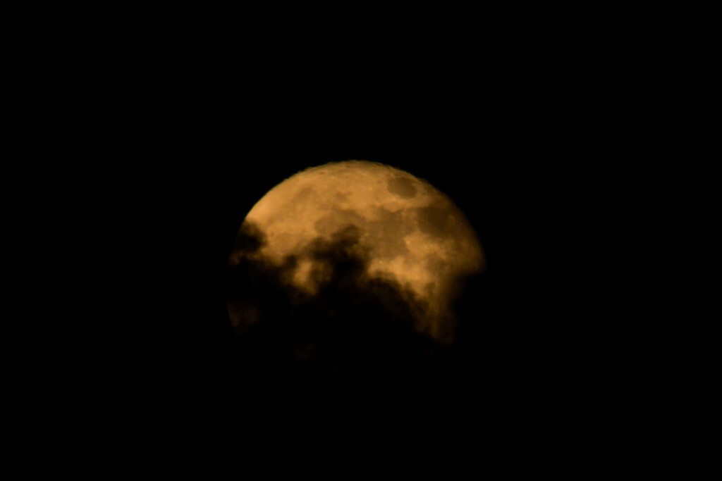 Bad Moon Rising by danette