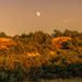 setting sun rising moon