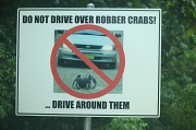 20th Jan 2011 - the crabs are very important on the island - there are numerous signs urging people to take care to not run them over