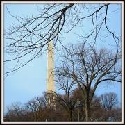21st Jan 2011 - Washington Monument