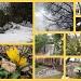 Not Quite Spring Walk by allie912