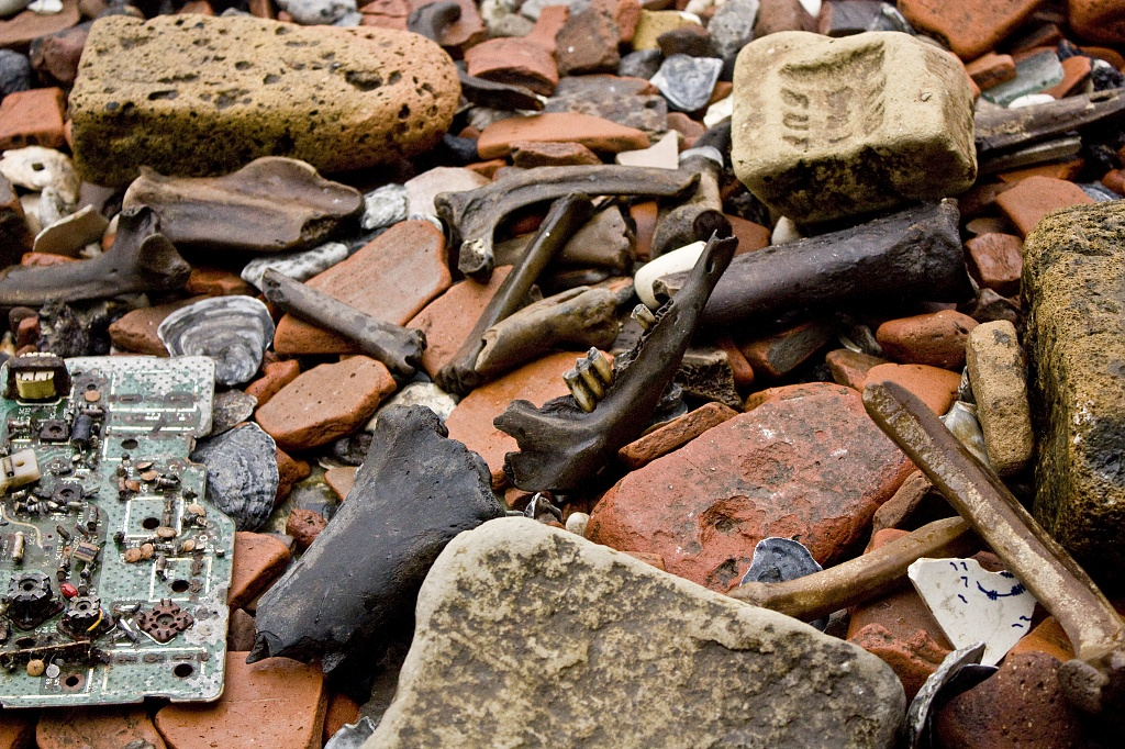 B is for bricks, bones and (circuit) board ... by edpartridge