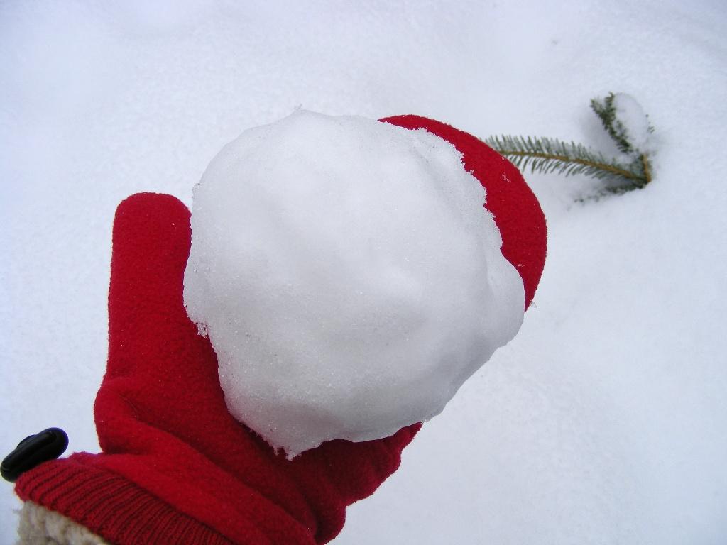 Snowball, Not Snowman by lauriehiggins
