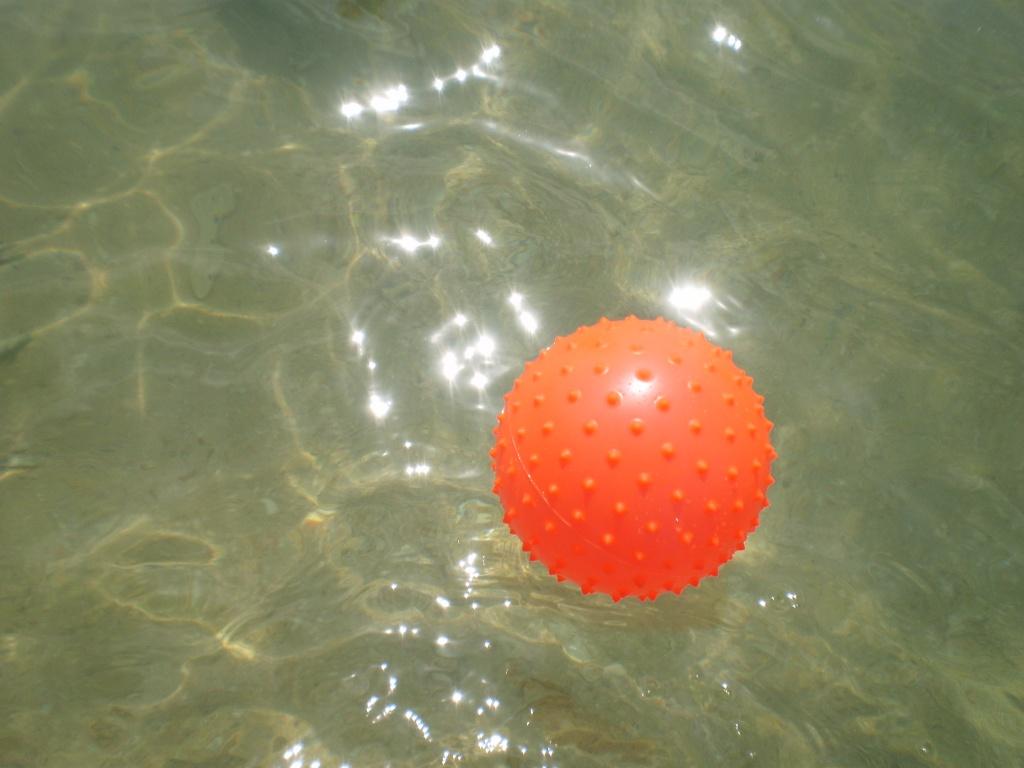 Spiky ball by snowy
