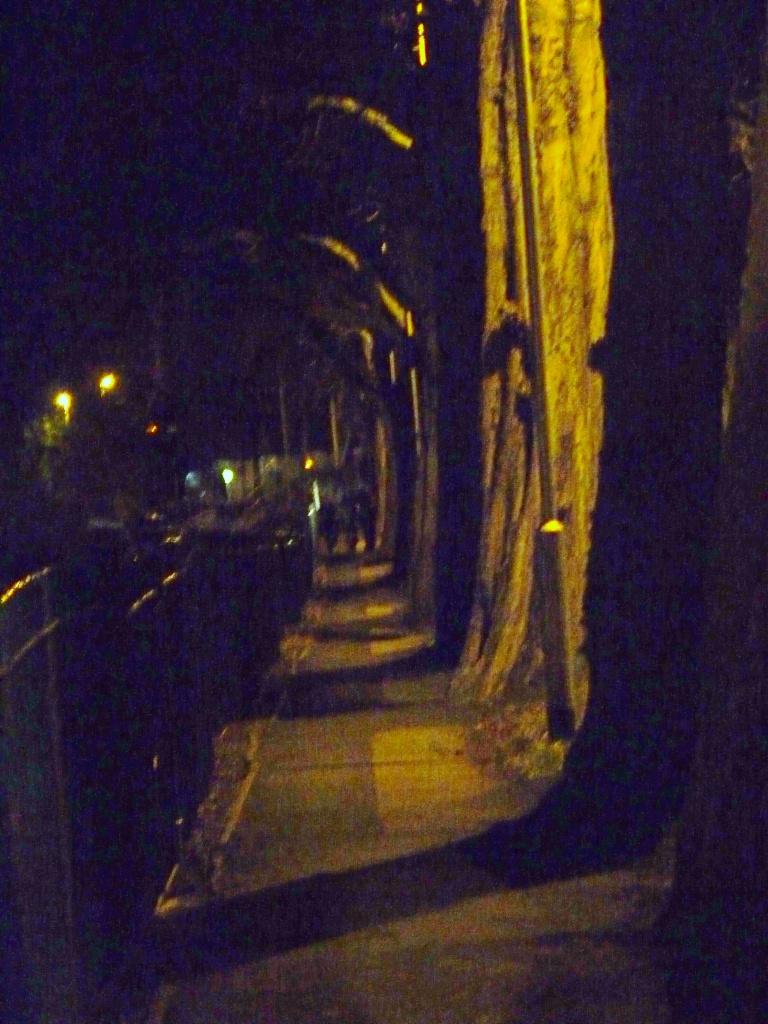 Night walk by sabresun