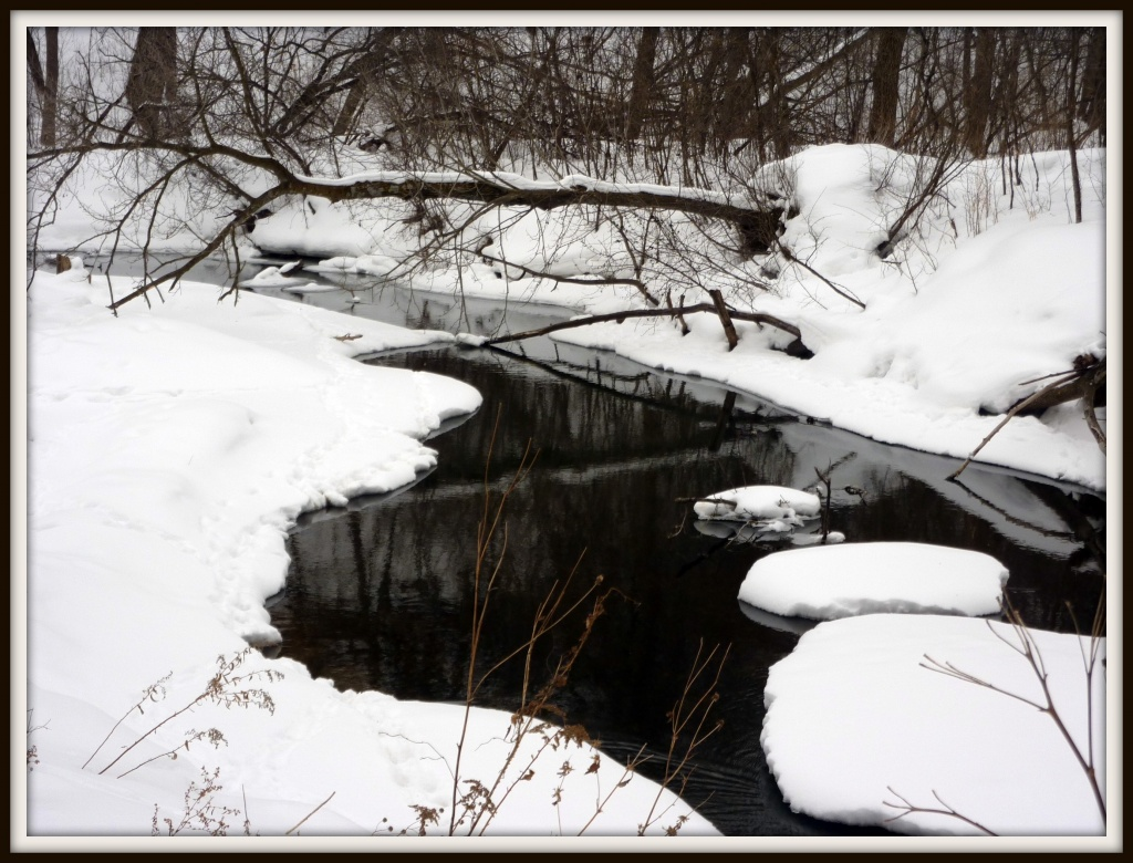 Winter Creek by denisedaly