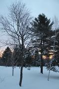 7th Feb 2011 - Sunrise in Sangerville